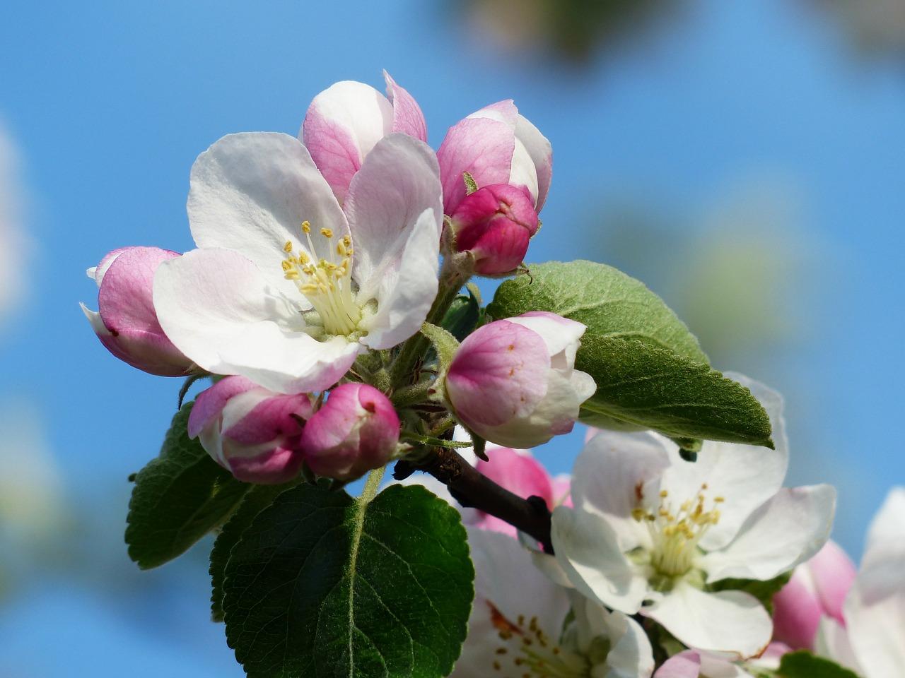 Wiosna to doskonała okazja na zmiany!