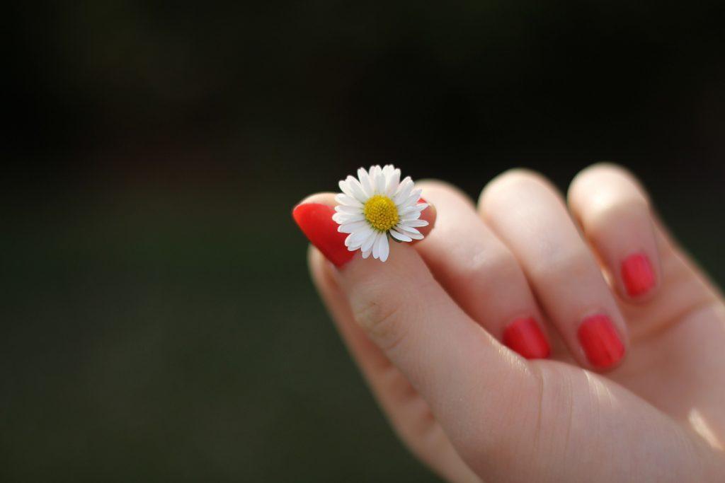 lakiery idealne na wiosnę