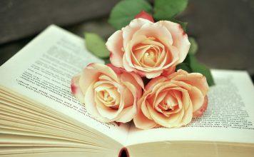 romantyczne powieści