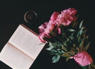 majówka z książką