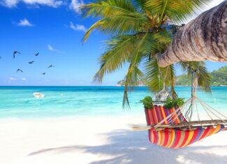 Jak planujemy spędzić wakacje 2021