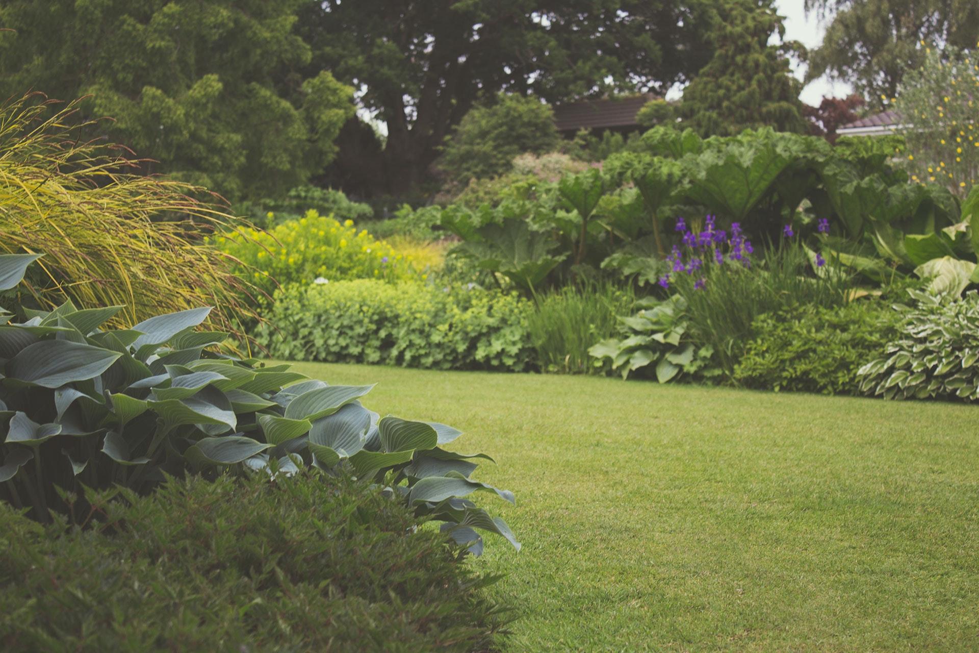 Ogrodowa terapia